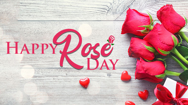 Rose Day: 7thFebruary 2020